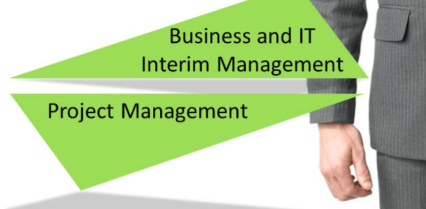 Business and IT Interim Management, Project Management